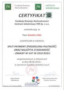dyplom - kurs split payment